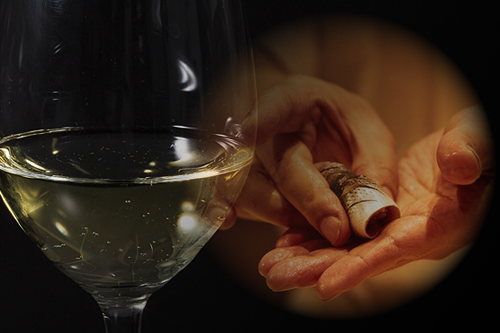 みすじワインと鮨
